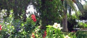 manutenzione-giardino