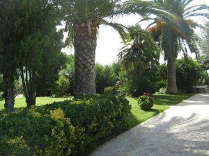 progettazione-giardino2